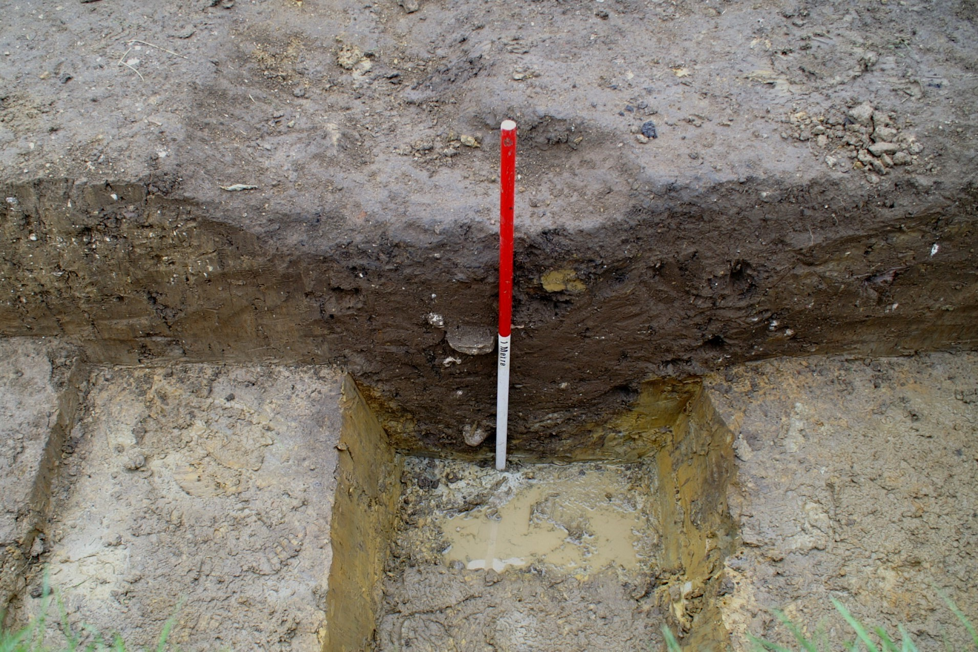 The ditch in Trench 1